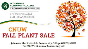 native plant center center for native and urban wildlife u0027s fall plant sale set for oct