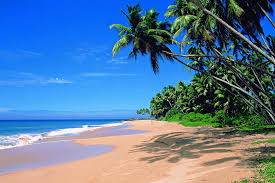 russian beaches goa beaches wonderful tourists place in india found the world