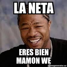 Neta Meme - meme yo dawg la neta eres bien mamon we 17249745