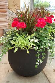 Outdoor Planter Ideas by Images Of Potted Plant Ideas How To Plant A Patio Pot Container