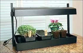 grow lights for indoor herb garden herb grow light get a jump start on spring with this grow light