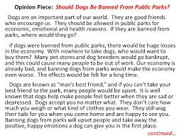 Class Activity Here is a pretty good example of an opinion essay     SlidePlayer The final reason not to ban dogs from public parks would be for health