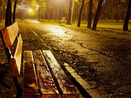 Benches In Park - bench in park at night raining photohdx