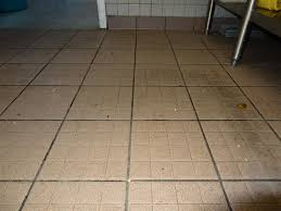 Kitchen Floor Tile Ideas by Kitchen Floor Serenity Commercial Kitchen Flooring