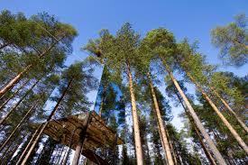7 luxury treehouse retreats travel british lifestyle blog