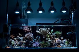led lights for coral tanks 1pcs led aquarium light 30cm 40cm 60cm 90cm white blue led light