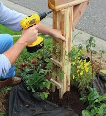 mailbox makeover iowa gardener magazine enewsletter