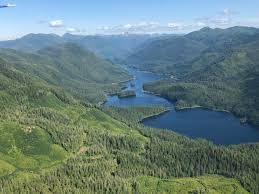 Alaska Forest images Flying high over tongass national forest in alaska jpg