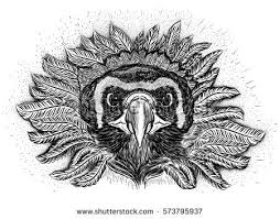free condor vector illustration download free vector art stock