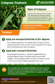 how to get rid of u0026 kill crabgrass treatment u0026 control
