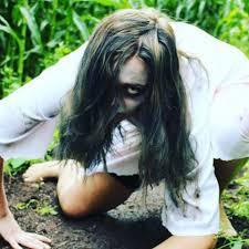 100 halloween haunted corn maze spooks u0026 scares at the