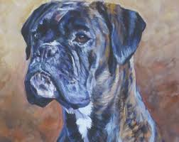 boxer dog yorkshire brindle boxer etsy