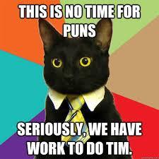 Meme Puns - this is no time for puns cat meme cat planet cat planet