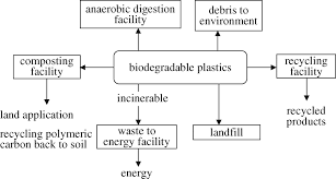 biodegradable and compostable alternatives to conventional