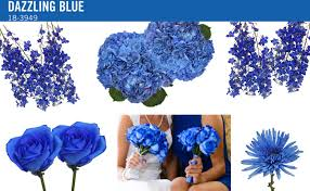 blue flowers for wedding pantone color trends for wedding flowers fiftyflowers
