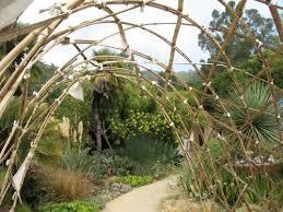 Uc Berkeley Botanical Gardens U C Botanical Garden At Berkeley S Garden Travel Buzz