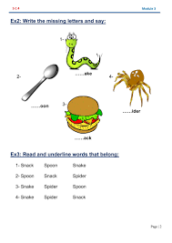 Spider Worksheets Yadfolio Your Partner In English Teaching Smart Class 4