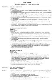 sle resume templates accountants compilation report income revenue resume sles velvet jobs