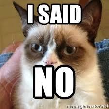 No Grumpy Cat Meme - i said no grumpy cat meme generator