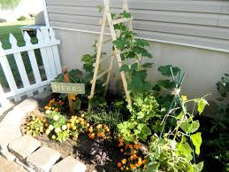 the house of normandy pumpkin trellis