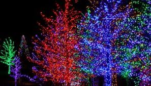 drive through christmas lights ohio kraynak s review get your holiday on