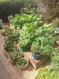 creative vegetable gardening creative garden
