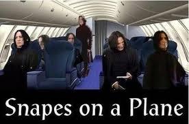 Snape Meme - i live for snape memes rebrn com