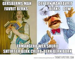 Swedish Meme - meeting the swedish muppet chef the meta picture