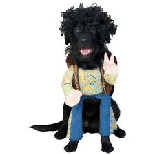 target dog halloween costumes redefining the face of beauty 10 head turning halloween dog