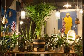 clover southsea florist bureau of change