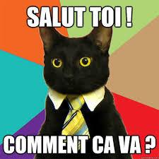 Va Memes - salut toi comment ca va business cat quickmeme