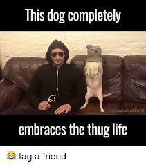 Thug Life Memes - 25 best memes about thug life thug life memes