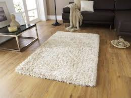 Shaggy Cream Rug 15 Best Rugs Images On Pinterest Red Roses Carpets And Modern