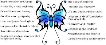butterfly designs to toe tats