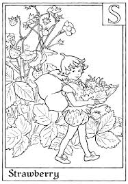 letter s for strawberry flower fairy coloring page alphabet