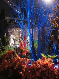 Pennsylvania how to travel light images 50 best philadelphia flower show images jpg