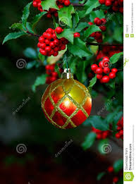 holly berries christmas ornament royalty free stock image image