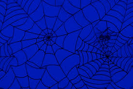 halloween spider web background spider web pattern free stock photo public domain pictures
