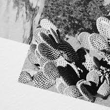 marble and cactus art print barclay haro art concepts