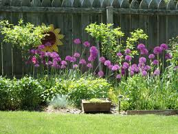 Sidewalk Garden Ideas Picture 9 Of 50 Landscaping Ideas Against Fence Inspirational