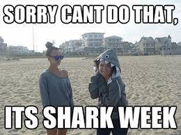 Shark Week Meme - here come the shark week memes