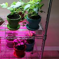 what is the best lighting for growing indoor create a diy indoor grow light system the home depot