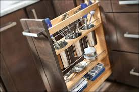 Kitchen Pull Out Cabinet by Kitchen Plate Organizer For Cabinet Storage Cabinet With Doors