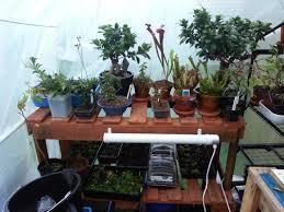 reclaimed wood creations u2013 rutland bonsai therapy
