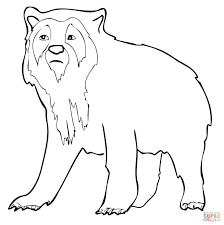 spectacled bear coloring page free printable coloring pages