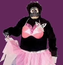 singing telegrams nj greetings nj singing telegrams cupid gorilla