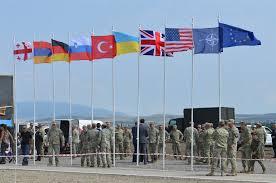 Georgian Flag United States European Command