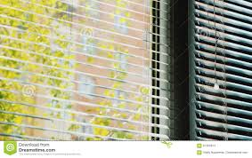 horizontal blinds open on the window outside the window is spring