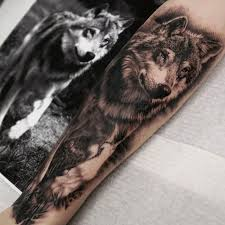 wolf forearm collections