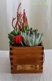 Indoor Garden Containers - creative container gardening creative container gardening and bowls